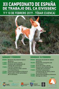 Cto España Ca Eivissenc web